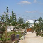 entretien espaces verts562