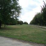 entretien espaces verts582
